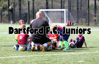 Dartford FC Juniors