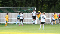 Dartford U18 v Horsham, Monday 19 May 2014, John Ullmann Cup Fin